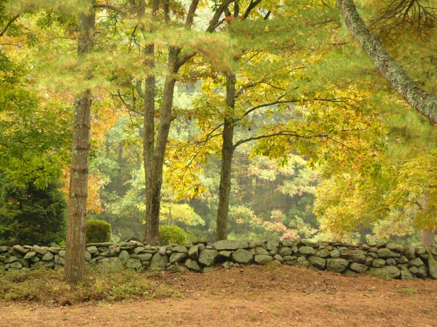New England Stone Wall in Autumn (Preview)